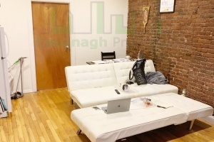 254 East 3rd st,New York,NY,2 Bedrooms Bedrooms,3 Rooms Rooms,1 BathroomBathrooms,Apartment,East 3rd st,2,1175