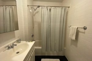 73 Pineapple st, Brooklyn, NY, 1 Bedroom Bedrooms, 2 Rooms Rooms,1 BathroomBathrooms,Apartment,For Rent,Pineapple st,3,1189