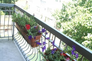 321 23rd Street, Brooklyn, NY, 2 Bedrooms Bedrooms, 5 Rooms Rooms,1 BathroomBathrooms,Condo,For sale,23rd Street,1047