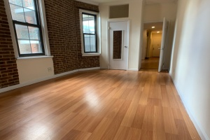 71 Pineapple Street, Brooklyn, NY, 1 Bedroom Bedrooms, ,1 BathroomBathrooms,Apartment,For Rent,Pineapple Street,3,1051